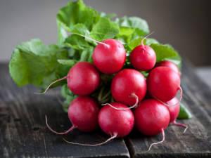 tokita-prodotti-radish